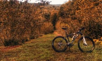 Rower na jesień
